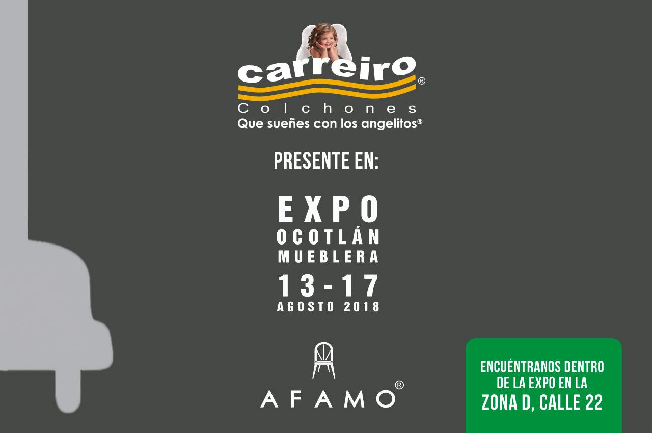 Expo Ocotlan Mueblera